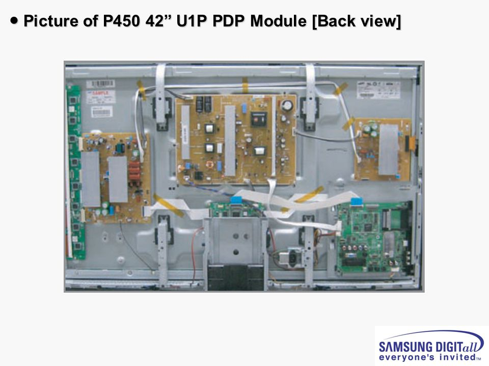 ● Picture of P450 42 U1P PDP Module [Back view]